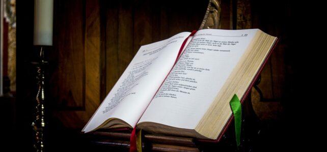 Second Sunday Before Advent  – 15 November 2020