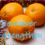 Advent Calendar – 1 December : Advent 1