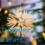 Advent Calendar – 25 December – Christmas Day
