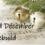 Advent Calendar – 3 December : Advent 1